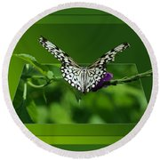 Butterfly White 16 By 20 Round Beach Towel