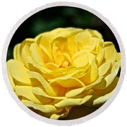 Buttery Rose Round Beach Towel