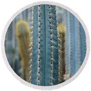 Cactus 14 Round Beach Towel
