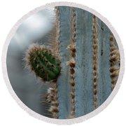 Cactus 17 Round Beach Towel