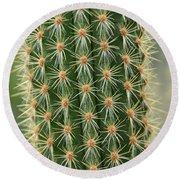Cactus 19 Round Beach Towel