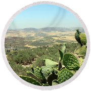 Cactus At Samaria Round Beach Towel