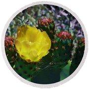 Cactus Blossom 8 Round Beach Towel