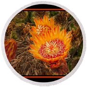 Cactus Flower 3 Round Beach Towel
