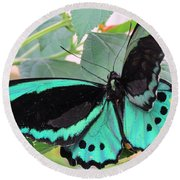 Butterfly Of Many Colors Round Beach Towel