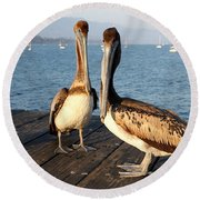 California Pelicans Round Beach Towel