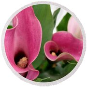 Calla Lilies In Pink Round Beach Towel