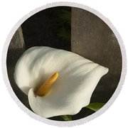 Calla Lily And Fence Round Beach Towel