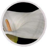 Calla Lily Flower Round Beach Towel
