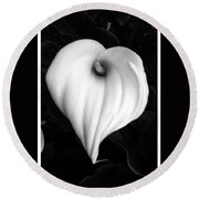 Calla Lily In Black And White Round Beach Towel