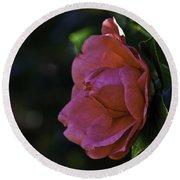 Camellia Twenty-five  Round Beach Towel