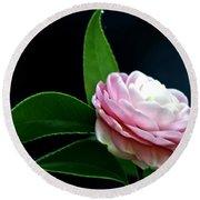 Camellia Twenty-four  Round Beach Towel