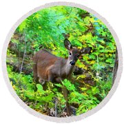 Can I Help You My Deer Round Beach Towel