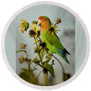 Can You Say Pretty Bird? Round Beach Towel