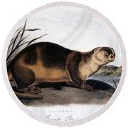 Canada Otter, 1846 Round Beach Towel