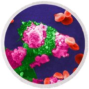Cancer Cell Death, Sem 3 Of 6 Round Beach Towel
