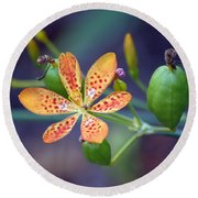 Candy Lily Round Beach Towel