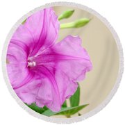 Candy Pink Morning Glory Flower Round Beach Towel