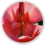 Canna Lily Close Up Round Beach Towel