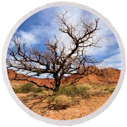 Capitol Tree Round Beach Towel