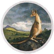 Captain Cook Kangaroo 1773 Photograph By Granger