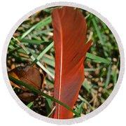 Cardinal Feather Round Beach Towel