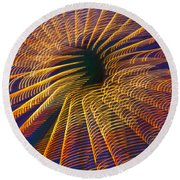 Carnival Abstract Lights Round Beach Towel