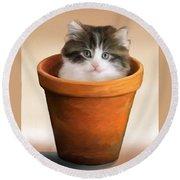 Cat In A Pot Round Beach Towel