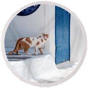 Cat In Mykonos Round Beach Towel