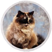 Cat Portrait Of A Cat Round Beach Towel