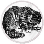 Cat-tabby-posters-1 Round Beach Towel