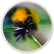 Caterpillar In Abstract Round Beach Towel