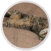 Catnip Round Beach Towel