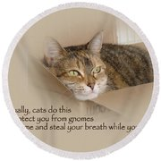 Cats Protecting You From Gnomes - Lily The Cat Round Beach Towel