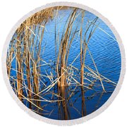 Cattail Reeds Round Beach Towel by Ms Judi