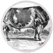 Cattle, 1867 Round Beach Towel