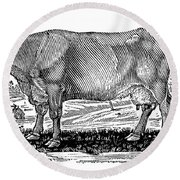 Cattle Round Beach Towel