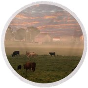 Cattle In The Fog Round Beach Towel