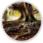 Centenarian Tree Round Beach Towel