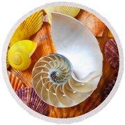 Chambered Nautilus  Round Beach Towel
