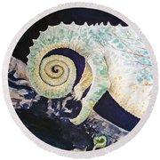 Chameleon Tail Round Beach Towel