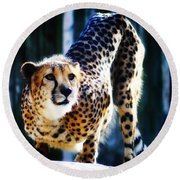 Cheeta Round Beach Towel