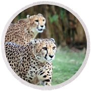 Cheetah Brothers Round Beach Towel