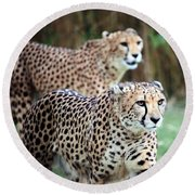 Cheetah Brothers Round Beach Towel