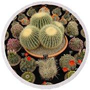 Chelsea Flower Show Cacti Display Round Beach Towel