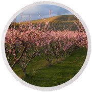 Cherry Blossom Pink Round Beach Towel