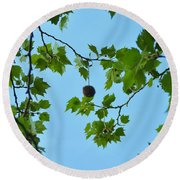 Chestnut Round Beach Towel