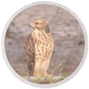 Chicken Hawk 2 Round Beach Towel