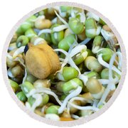 Chickpea And Other Lentils In The Form Of Healthy Eatable Sprouts Round Beach Towel