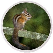 Chipmunk In The Forest Round Beach Towel